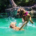 Parchi divertimento pet-friendly: ecco quelli con accesso consentito a cani e gatti